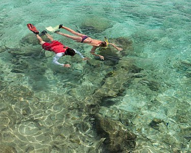 Divi Flamingo All Inclusive Beach Resort snorkelen
